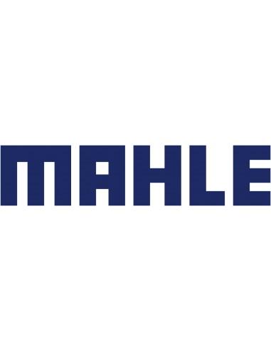 Coussinets de bielle MAHLE Motorsport