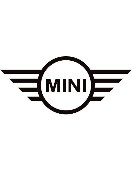 Inserts de tableau de bord carboneRSI C6 pour mini R561112